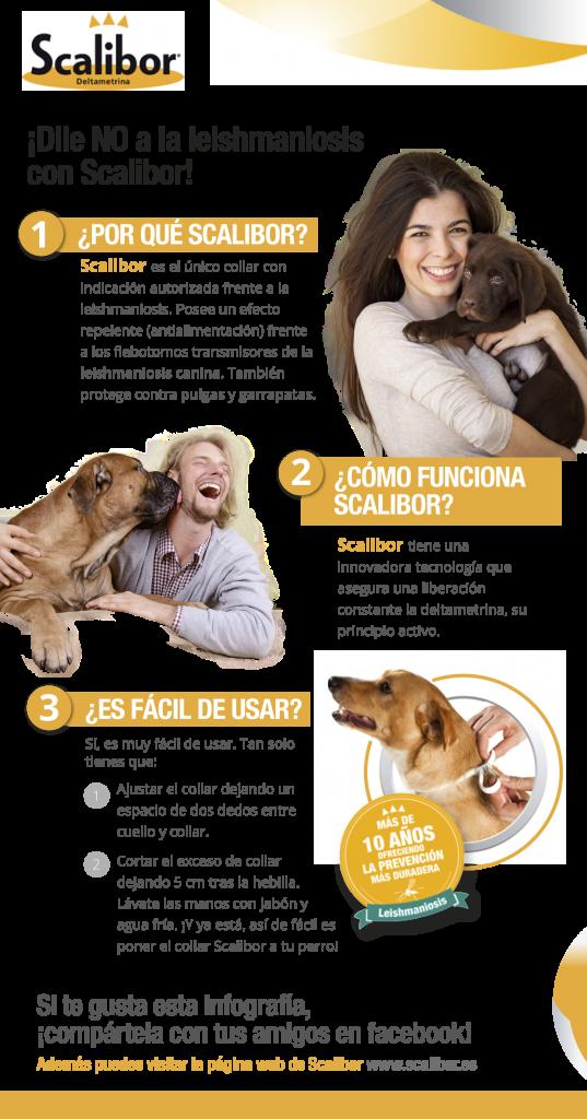 El collar Scalibor es el antiparasitario para perros más famoso y eficaz contra pulgas, garrapatas y el mosquito transmisor de la Leishmaniosis.