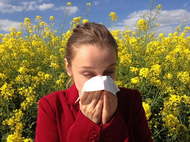 Aunque se habla de alergias de primavera en términos generales, este término suele referirse esencialmente a la alergia al polen o polinosis, que cada vez afecta a una mayor proporción de la población de los países desarrollados y en especial a niños. Además, este tipo de alergias se asocia muchas veces a la alergia a los ácaros.Para estas personas la llegada de la primavera y, por tanto, del momento en que muchas plantas y árboles desarrollan la polinización supone siempre un riesgo significativo de sufrir toda una serie de síntomas que pueden abarcar desde estornudos a conjuntivitis, rinitis, dificultades respiratorias, eccemas y crisis asmáticas. Por eso es el momento de adoptar rutinas preventivas que pueden evitar inhalar el polen, presente en el aire que se respira:En la medida de lo posible, debe evitarse salir a la calle en las horas en las que la concentración de polen es mayor: al amanecer y al atardecer. En cualquier caso, es preferible evitar los parques y jardines.Consultar diariamente cuál es la concentración de polen en la ciudad en que se vive (se puede hacer en la página de la Sociedad Española de Alergología e Inmunología Clínica: www.polenes.com).Hay que tener siempre a mano los medicamentos recomendados por el alergólogo para hacer frente a los síntomas característicos de la alergia. Se deben utilizar siguiendo siempre sus indicaciones.Si se sale, utilizar gafas de sol para proteger los ojos del polen.Mantener las ventanas de casa cerradas para evitar la entrada del polen, especialmente si hace viento y sol. Bastan diez minutos para ventilar la casa, pero hay que hacerlo en el momento en que la concentración de polen es menor: a mediodía.Hay que extremar la limpieza y evitar la concentración de polvo en la casa.Si se dispone de aire acondicionado, deberá utilizarse un filtro especial para el polen.Si se utiliza el coche, hay que hacerlo siempre con las ventanillas subidas y poner un filtro de polen en el aire acondicionado.La ropa se debe tender 