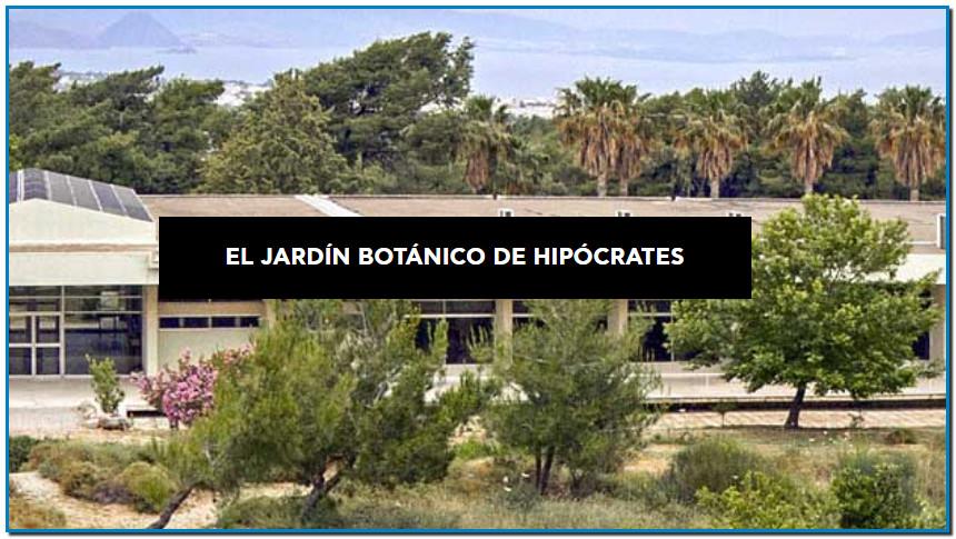 Apivita Jardín Botánico De Hipócrates «Ηγεμονικώτερον απάντων φύσις» La responsabilidad social está profundamente arraigada en el ADN de APIVITA